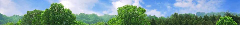 test-trees